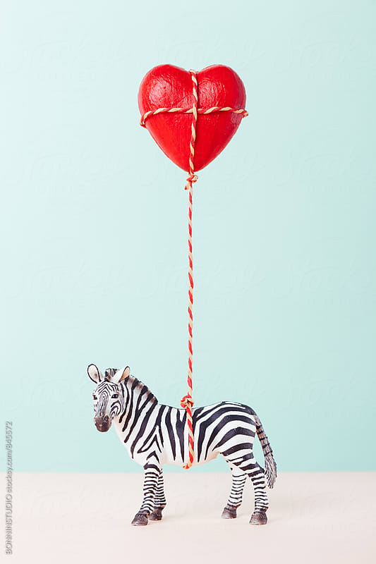 Zebra toy holding a red heart balloon.  by BONNINSTUDIO for Stocksy United