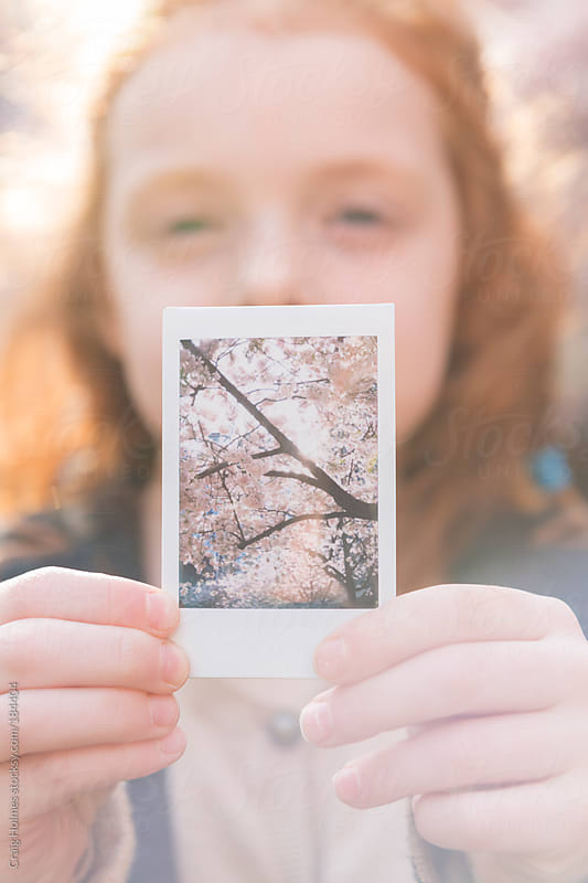 Little girl holding a polaroid of Cherry Blossom trees by Craig Holmes for Stocksy United