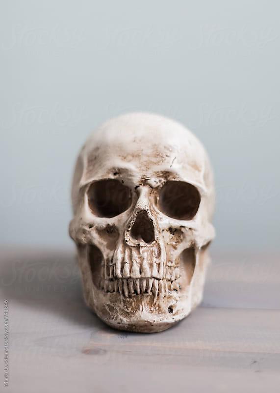Halloween Decor by Marta Locklear for Stocksy United