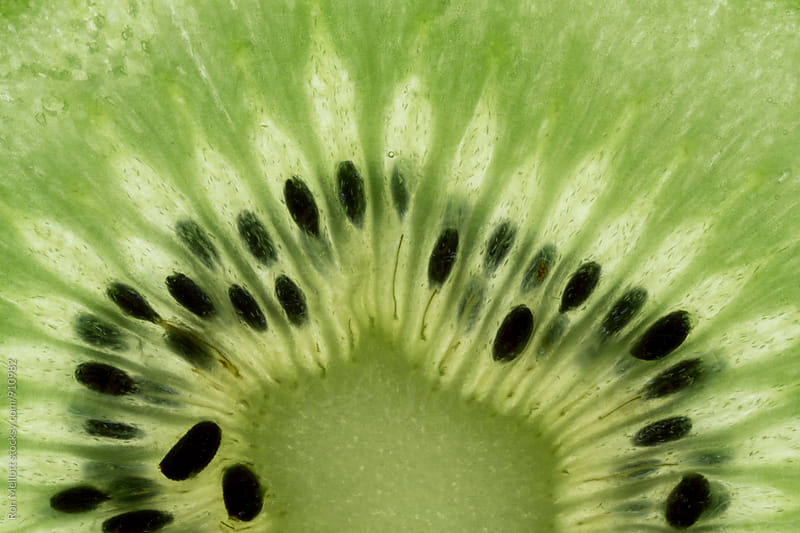 Closeup macrophotograph of a slice of kiwi fruit showing cells, seeds, internal structures by Ron Mellott for Stocksy United