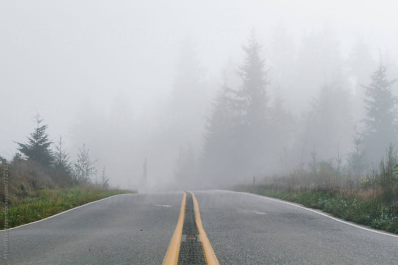 Gray fog covering a rural road with yellow dividers and forest in the background by Mihael Blikshteyn for Stocksy United