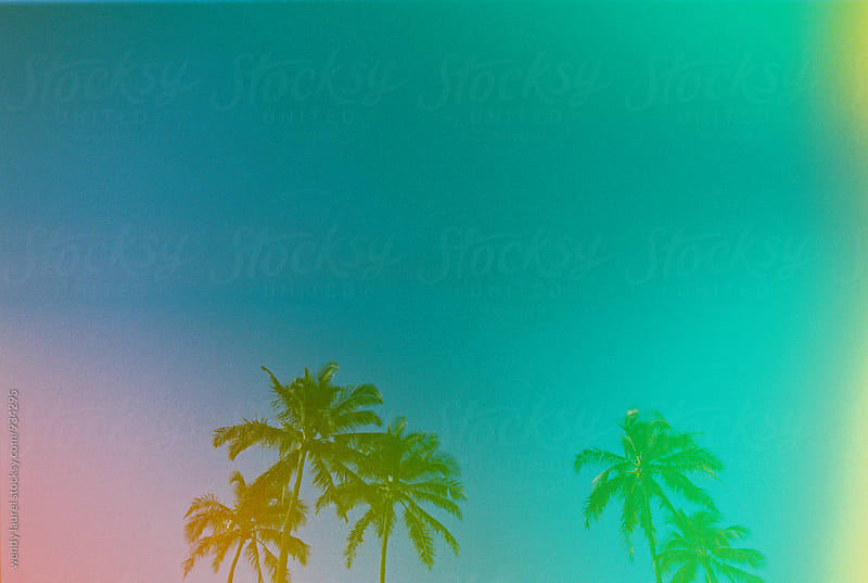 multi colored palm trees with green blue pink and yellow by wendy laurel for Stocksy United