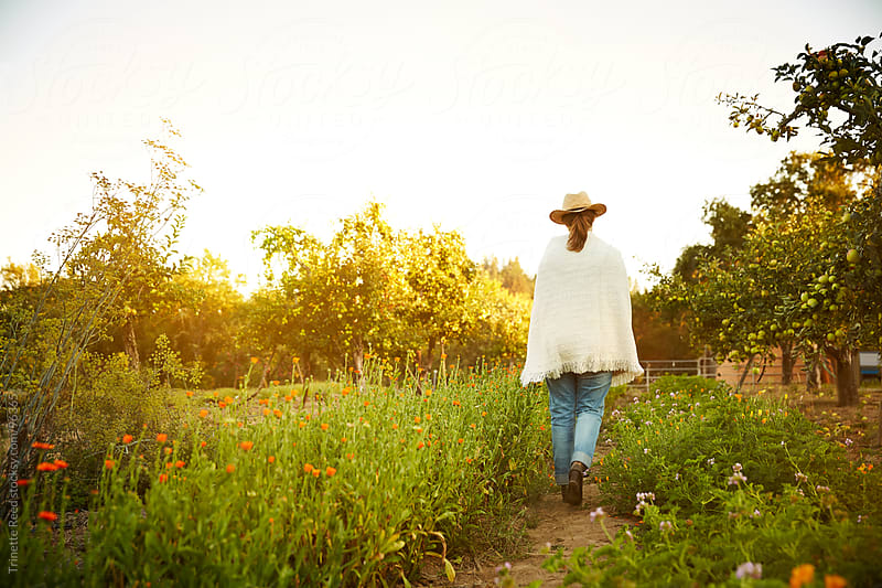 Woman farmer walking on farm at sunset in California  by Trinette Reed for Stocksy United