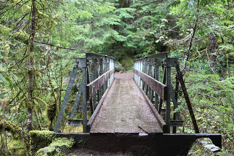 A Bridge Over A Body Of Water Into Nature by Carey Haider for Stocksy United