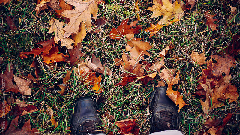 Autumn leaves with feet by Murtaza Daud for Stocksy United