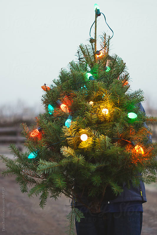 Man holds a lighted miniature Christmas tree by Tana Teel for Stocksy United