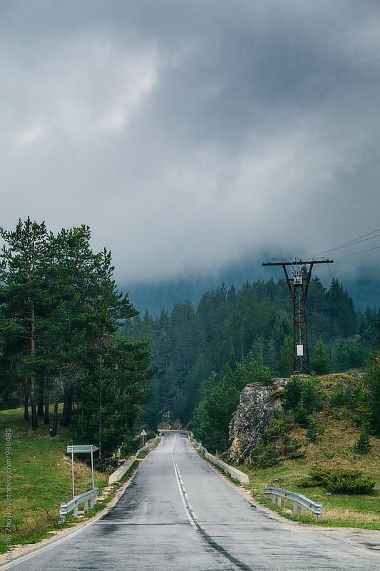 Wet road through the forest by Borislav Zhuykov for Stocksy United