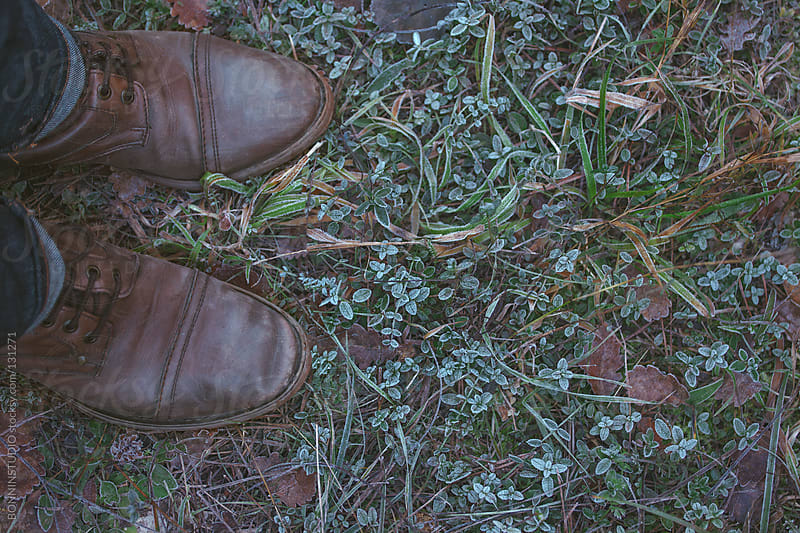 Overhead of man boots on a frosted green little leaves. by BONNINSTUDIO for Stocksy United