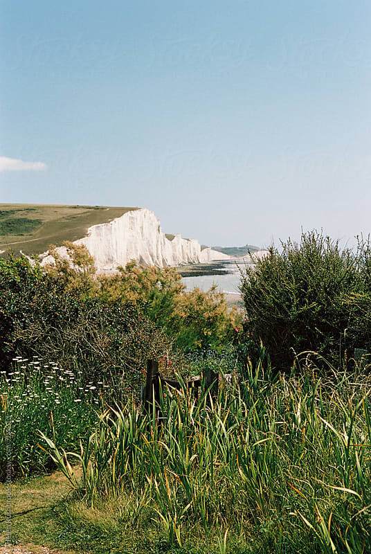 The white cliffs of the English south coast viewed from a cottage garden. by Helen Rushbrook for Stocksy United