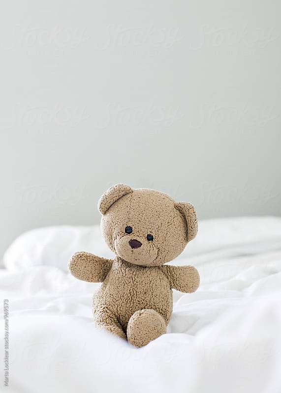 Teddy Bear by Marta Locklear for Stocksy United
