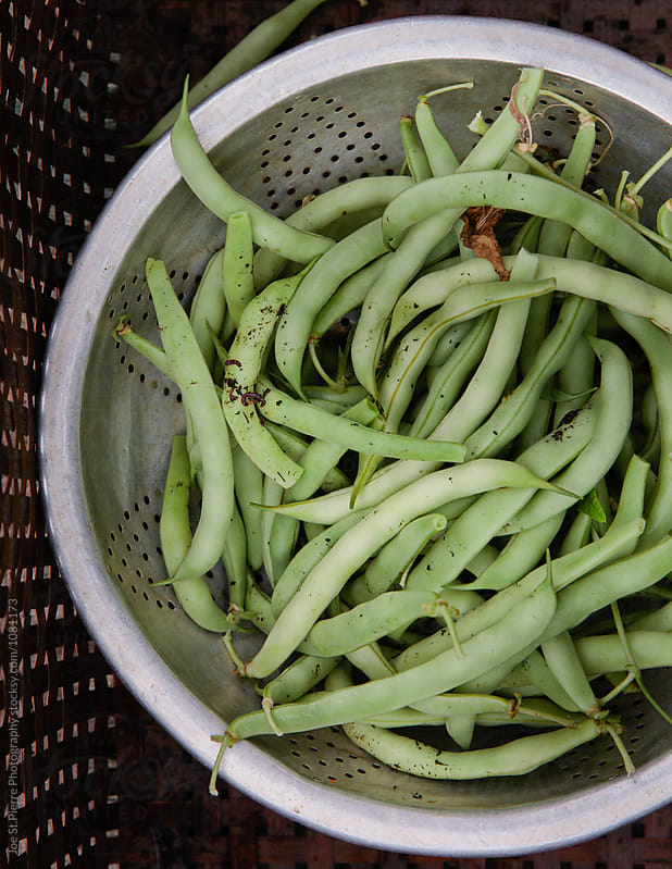 Fresh Green Beans  by Joe St.Pierre Photography for Stocksy United
