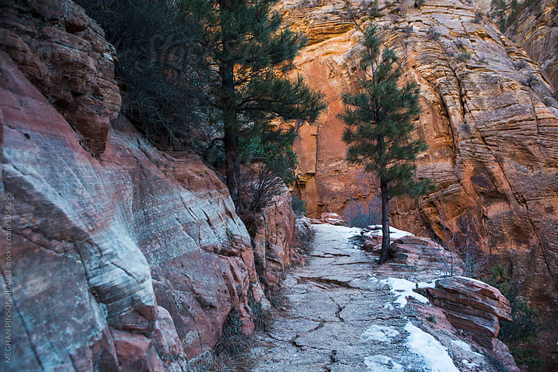 Snowy Trail with Colorful Canyon Walls by MEGHAN PINSONNEAULT for Stocksy United