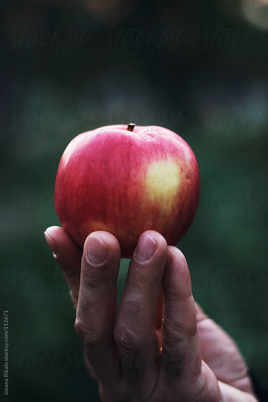 Man holding a fresh apple in his hand by Jovana Rikalo for Stocksy United