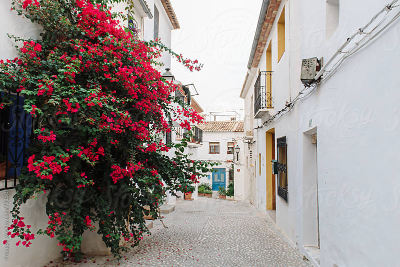 Altea, Alicante, Spain by Preappy for Stocksy United