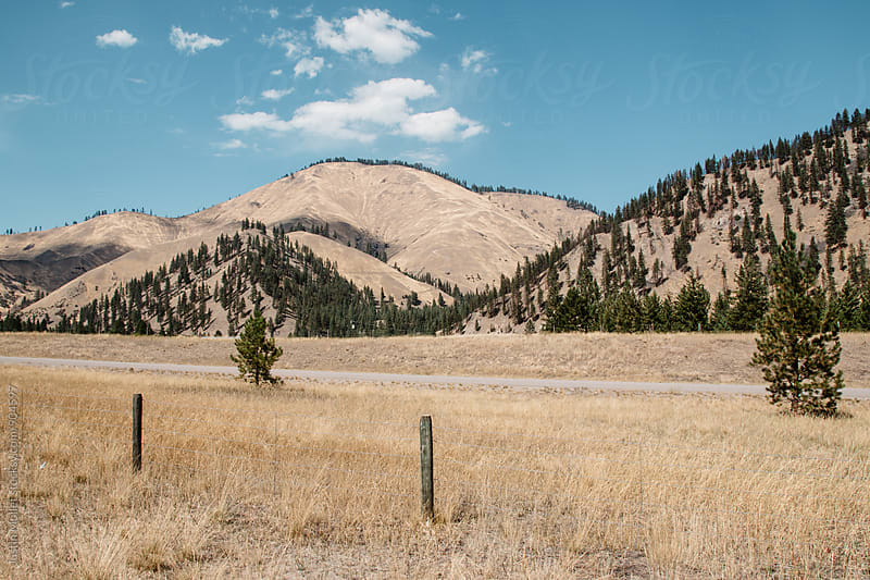 Dry grass and mountains in Montana by Justin Mullet for Stocksy United