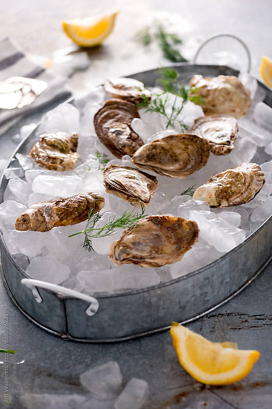 Raw Oysters in Metal Tray by Jeff Wasserman for Stocksy United