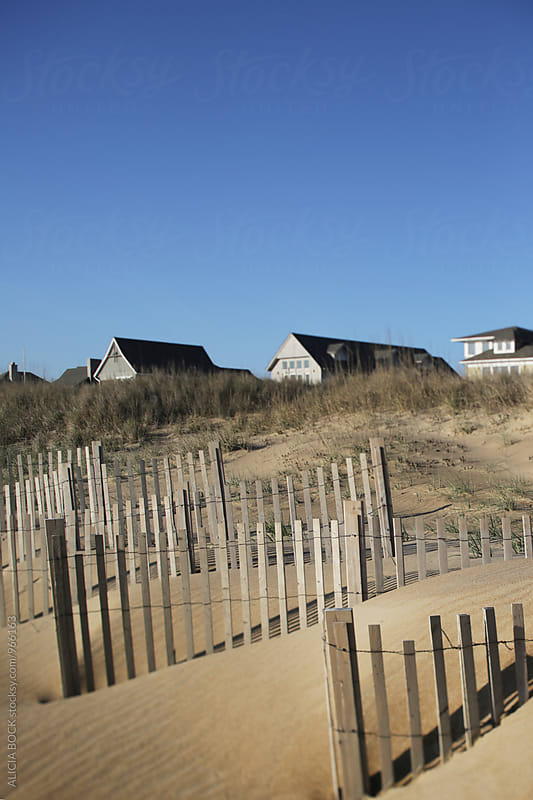 Coastal Homes Behind Rows Of Sand Fence On The Carolina Shore by ALICIA BOCK for Stocksy United