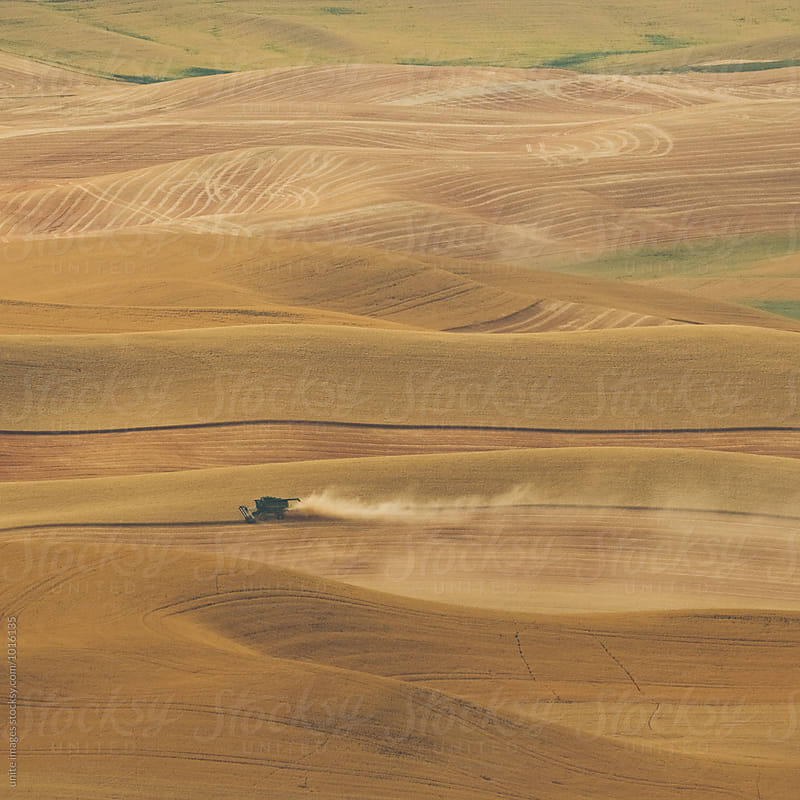 landscape of palouse, WA by unite images for Stocksy United