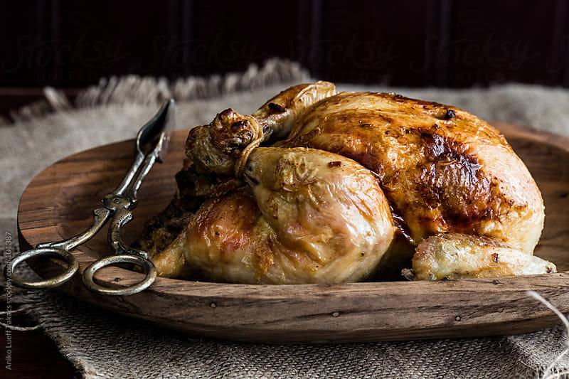 Stuffed Chicken by Aniko Lueff Takacs for Stocksy United