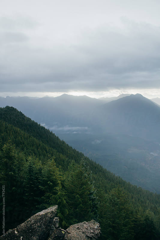 Evergreen Forest And Dark Blue Mountain Landscape by Luke Mattson for Stocksy United
