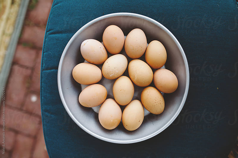 Fresh Eggs by Nate & Amanda Howard for Stocksy United