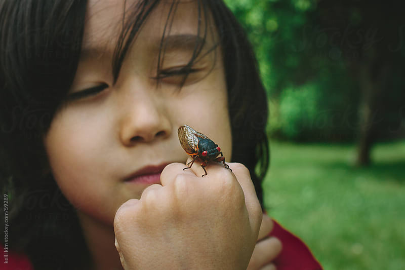Closeup Of Young Boy With Cicada Bug On Hand by kelli kim for Stocksy United