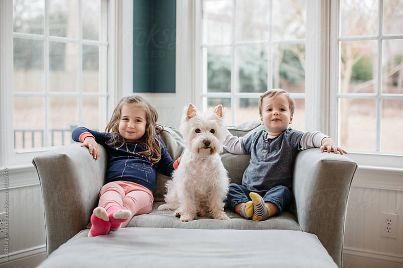 Cute young girl and boy sitting next a cute small white dog by Jakob for Stocksy United