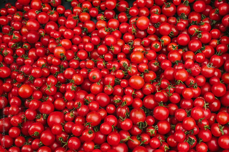 many red cherry tomatoes at farmers market by Cameron Zegers for Stocksy United
