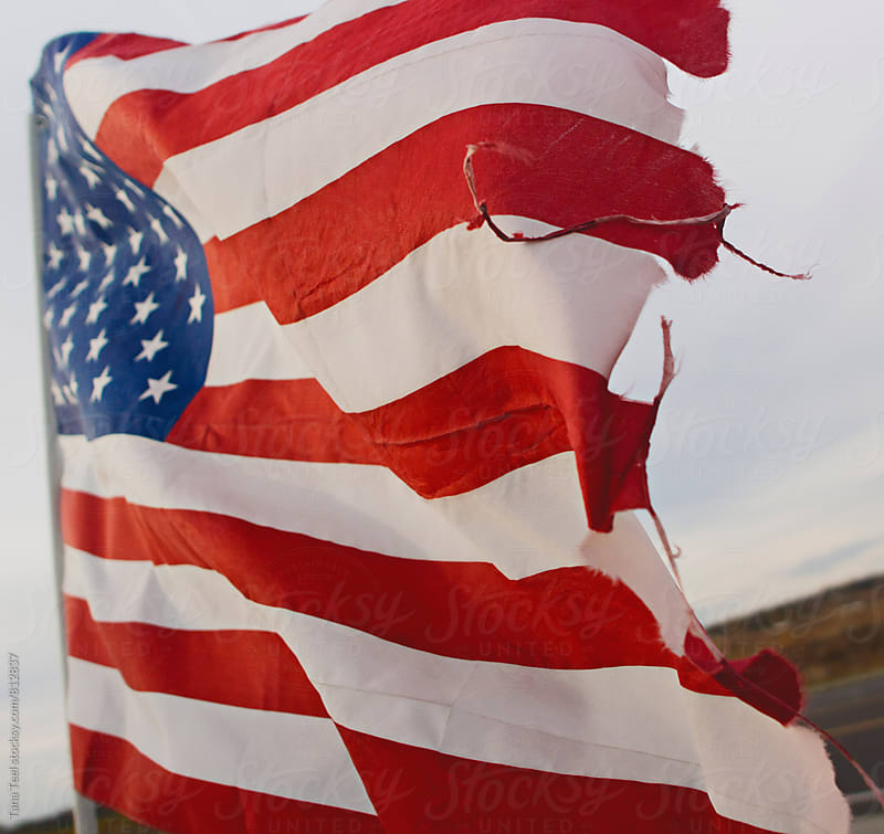 American flag waves in wind by Tana Teel for Stocksy United