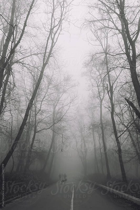 Dog and silhouettes in fog by Pixel Stories for Stocksy United