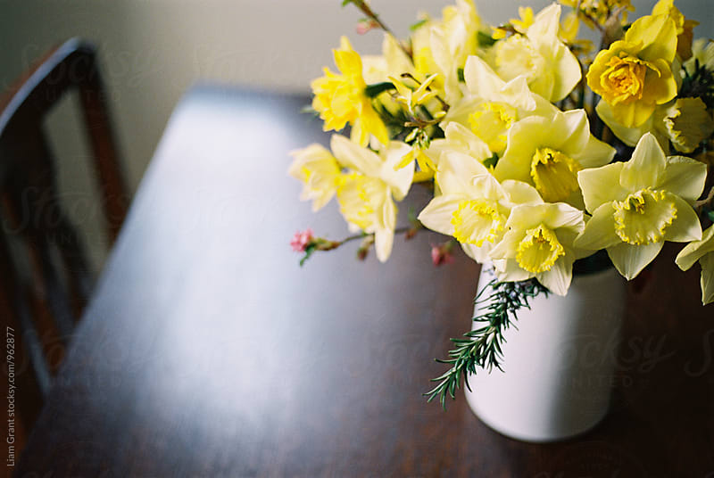 Easter flower arrangement of Daffodils and Rosemary. by Liam Grant for Stocksy United