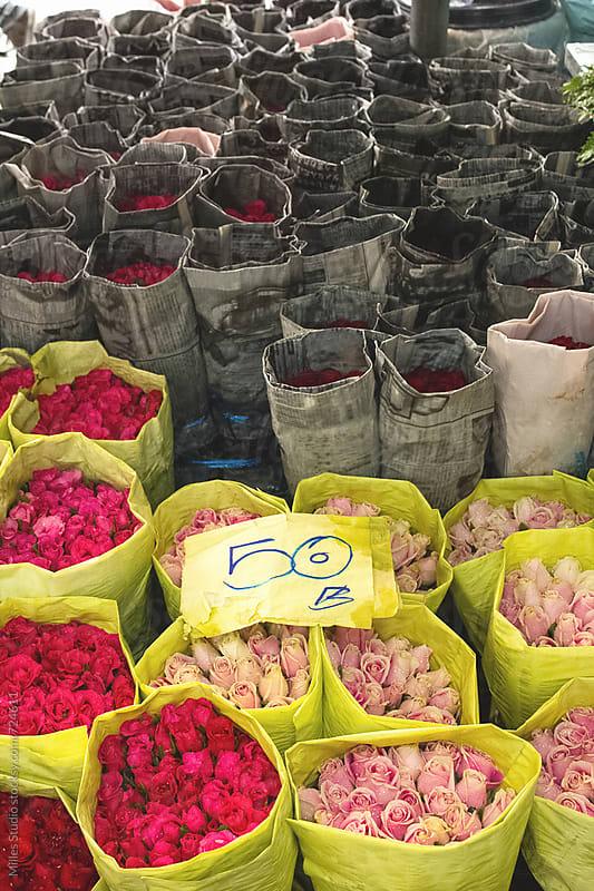 Flower market by Milles Studio for Stocksy United