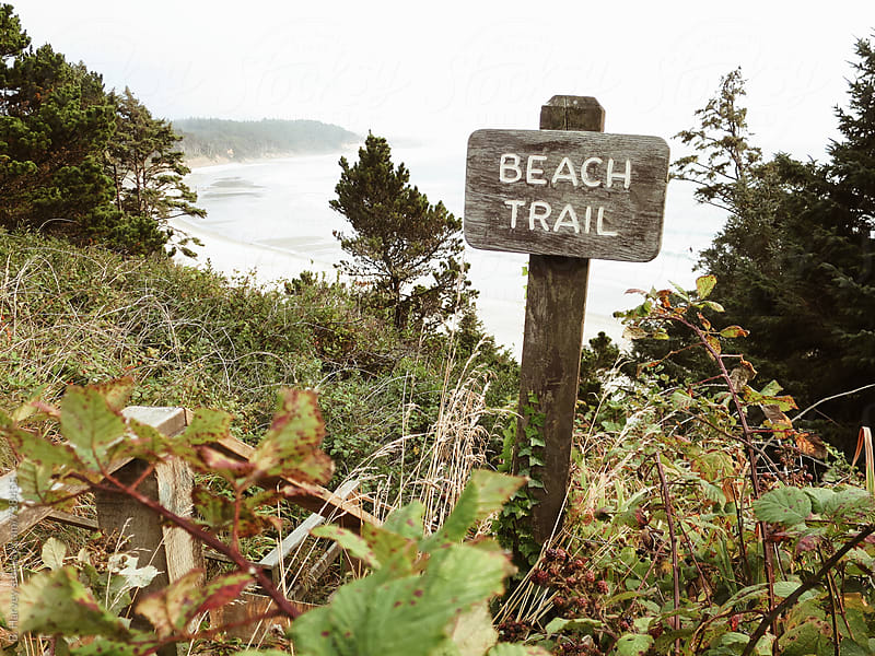 Beach Trail by B. Harvey for Stocksy United