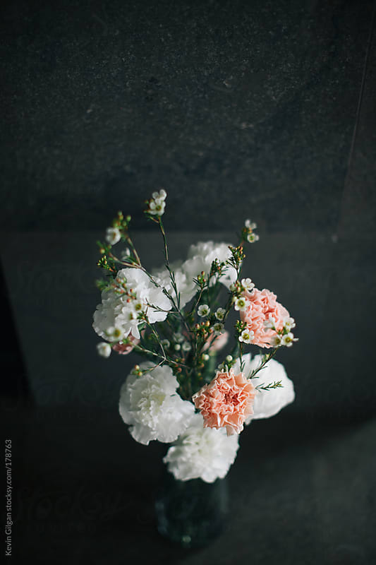 Flowers by Kevin Gilgan for Stocksy United