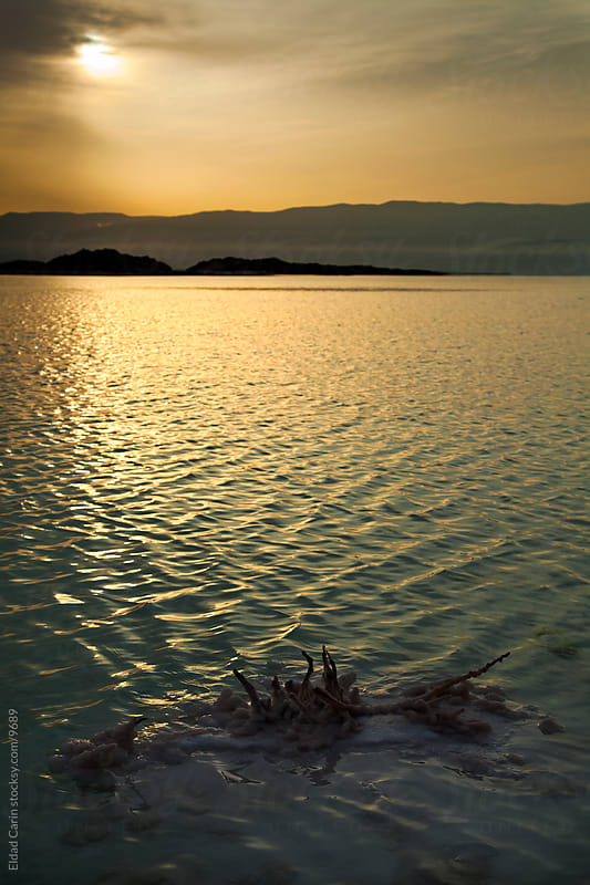 Dead Sea Sunrise - Ripples by Shore at Dawn by Eldad Carin for Stocksy United