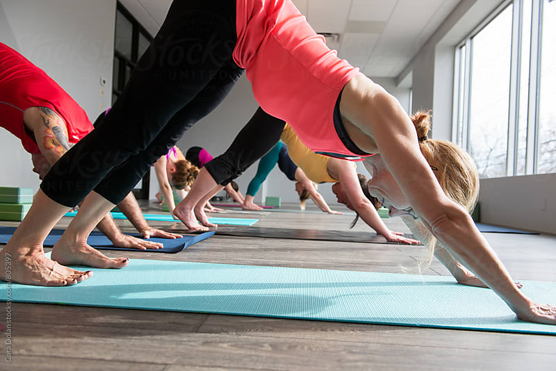 Group of yoga students in downward dog pose by Cara Dolan for Stocksy United