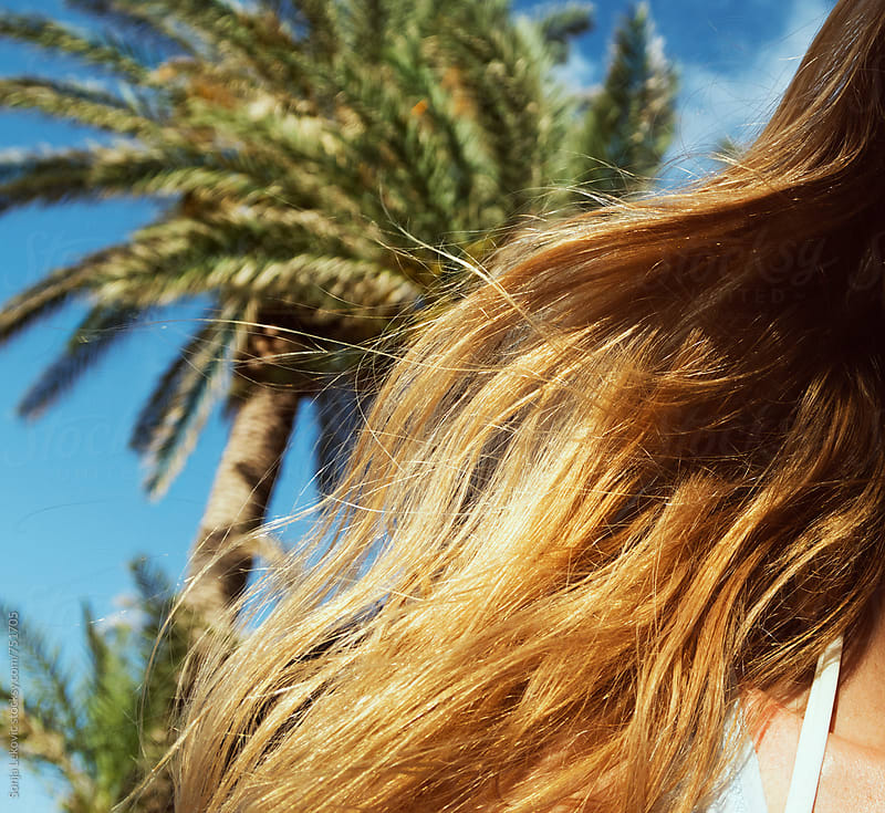 blond hair in the wind and palm tree closeup by Sonja Lekovic for Stocksy United