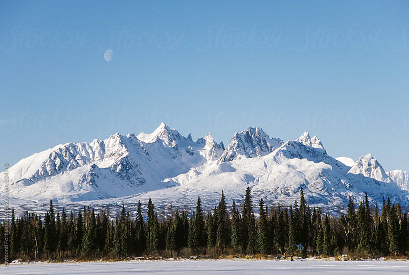 Denali National Park Alaska by Raymond Forbes LLC for Stocksy United