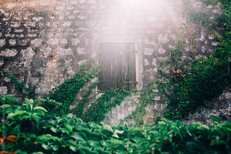 Wooden window on an old house by Maja Topcagic for Stocksy United
