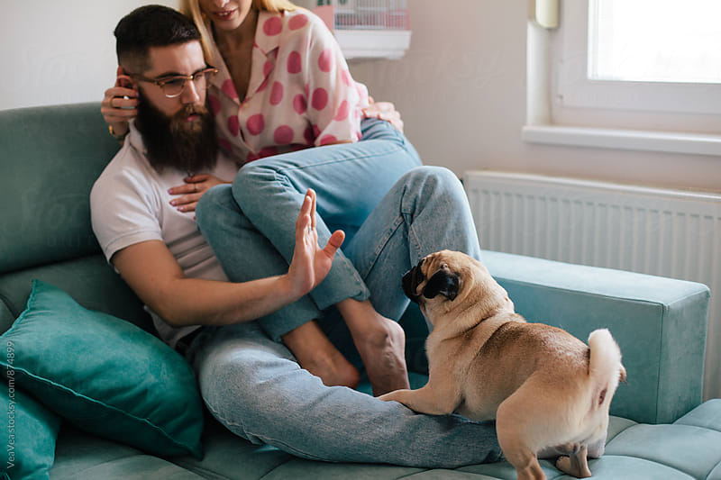 Couple having a good time with their dog indoor by Marija Mandic for Stocksy United