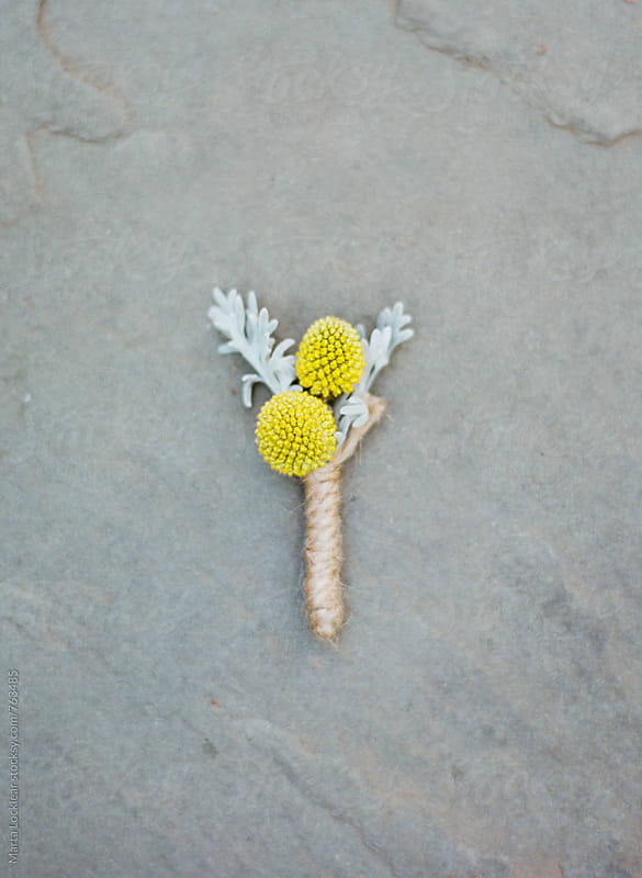 Yellow & Grey Boutonniere by Marta Locklear for Stocksy United