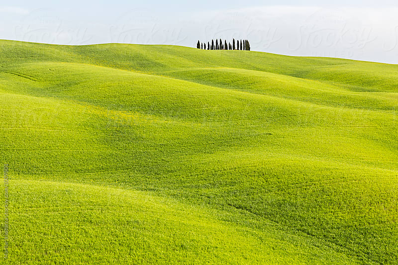Tuscany fields by Marilar Irastorza for Stocksy United