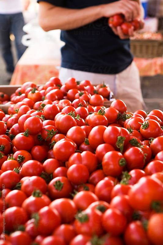 Choosing Tomatoes by Sara Remington for Stocksy United