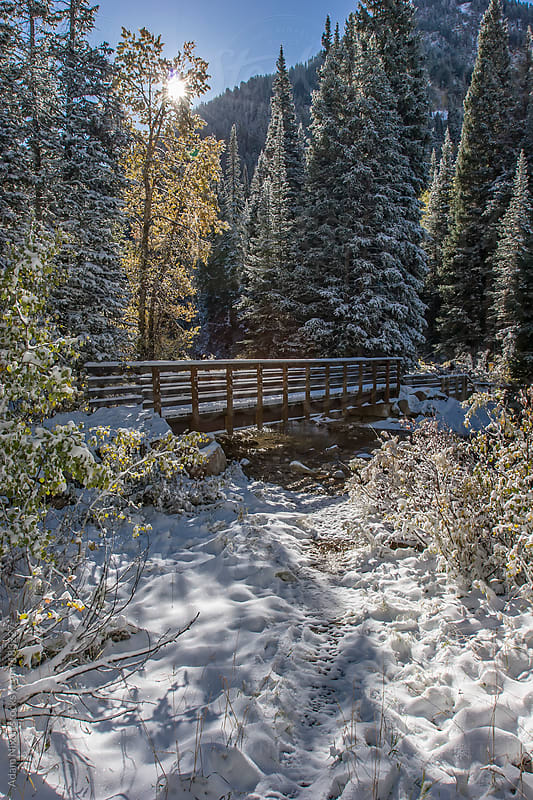Snow Covered Foot Bridge by Adam Nixon for Stocksy United