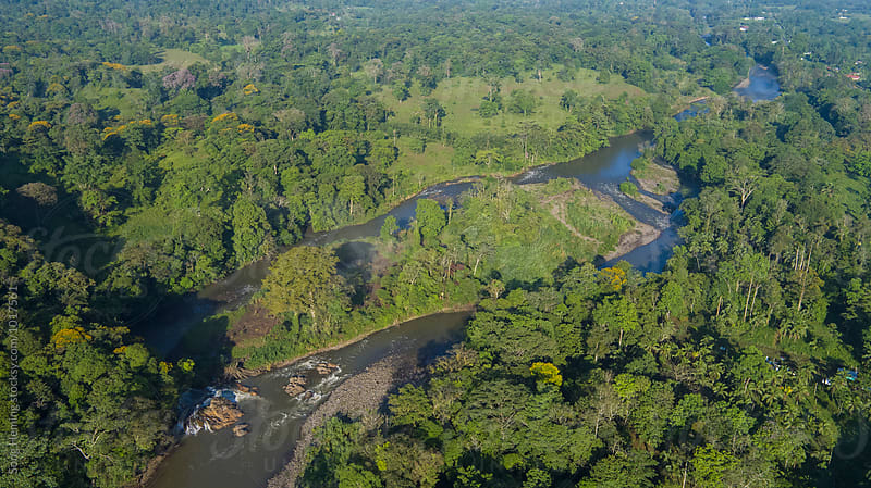 Aerial view of  the river in the rain forest by Song Heming for Stocksy United