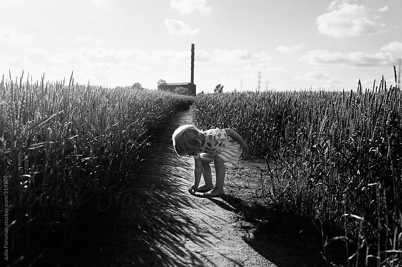 Toddler girl in wheat field in summery Finland by Julia Forsman for Stocksy United