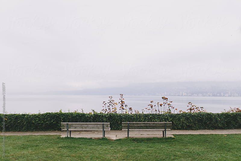 Park Benches by Dylan M Howell Photography for Stocksy United