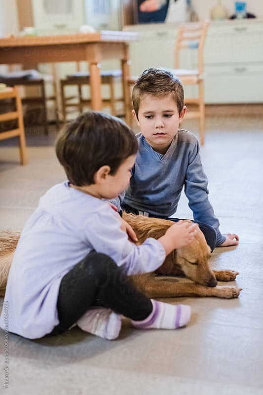 Children playing with the dog at home by Mauro Grigollo for Stocksy United