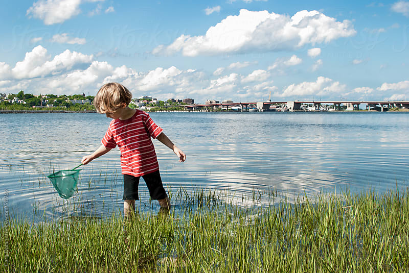 Boy with net wades in shallow waters  by Cara Dolan for Stocksy United