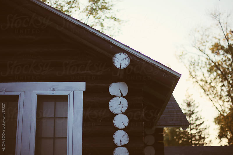 Log Cabin by ALICIA BOCK for Stocksy United